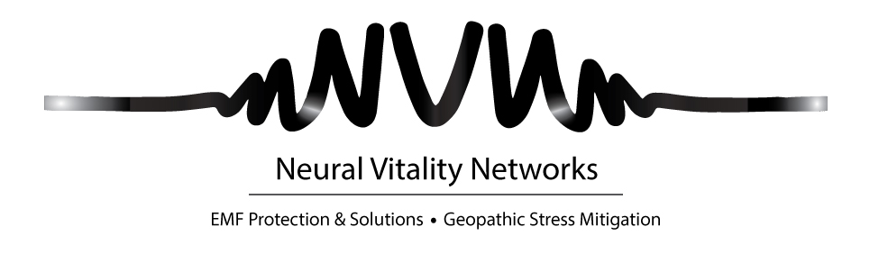 Neural Vitality Networks